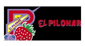 El Pilonar SCA